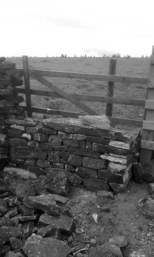 Traditional wall repair