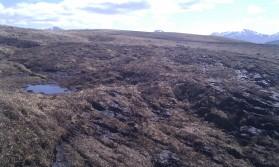 Peat land restoration: Reprofiled peat hags