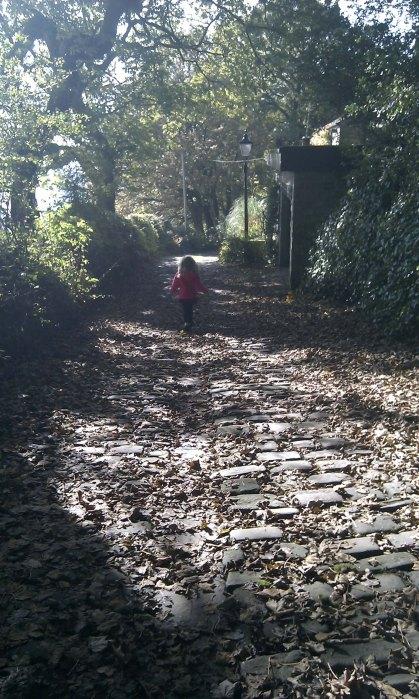 Stone pitching pathways
